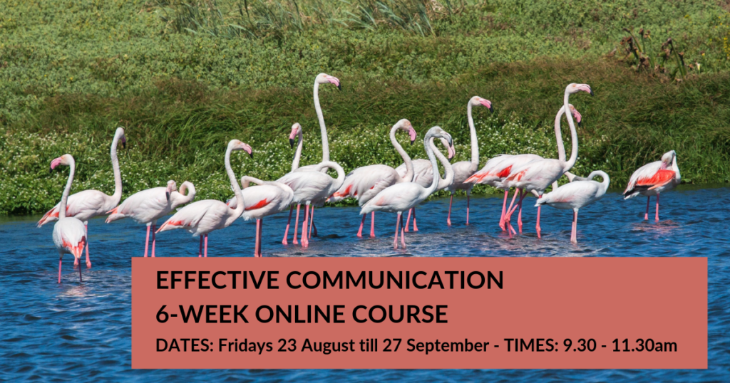 6-Week Online beginners course in Effective Communication (NVC)