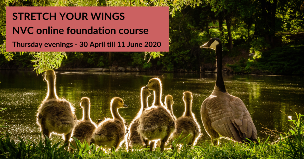 STRETCH YOUR WINGS - Online Foundation Course April May June 2020 BANNER