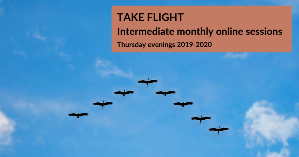 TAKE FLIGHT - Intermediate Online Course Banner