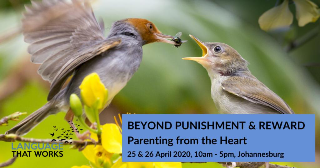 Beyond Punishment and Reward workshop